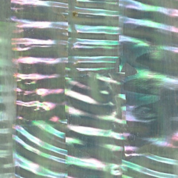 Green Abalone Ripple Inlay Sheet
