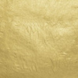 WB 18kt-Lemon-Usual Gold-Leaf Surface-Book
